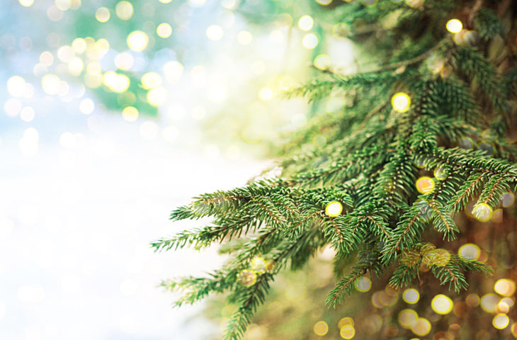 How to decorate a Christmas tree?