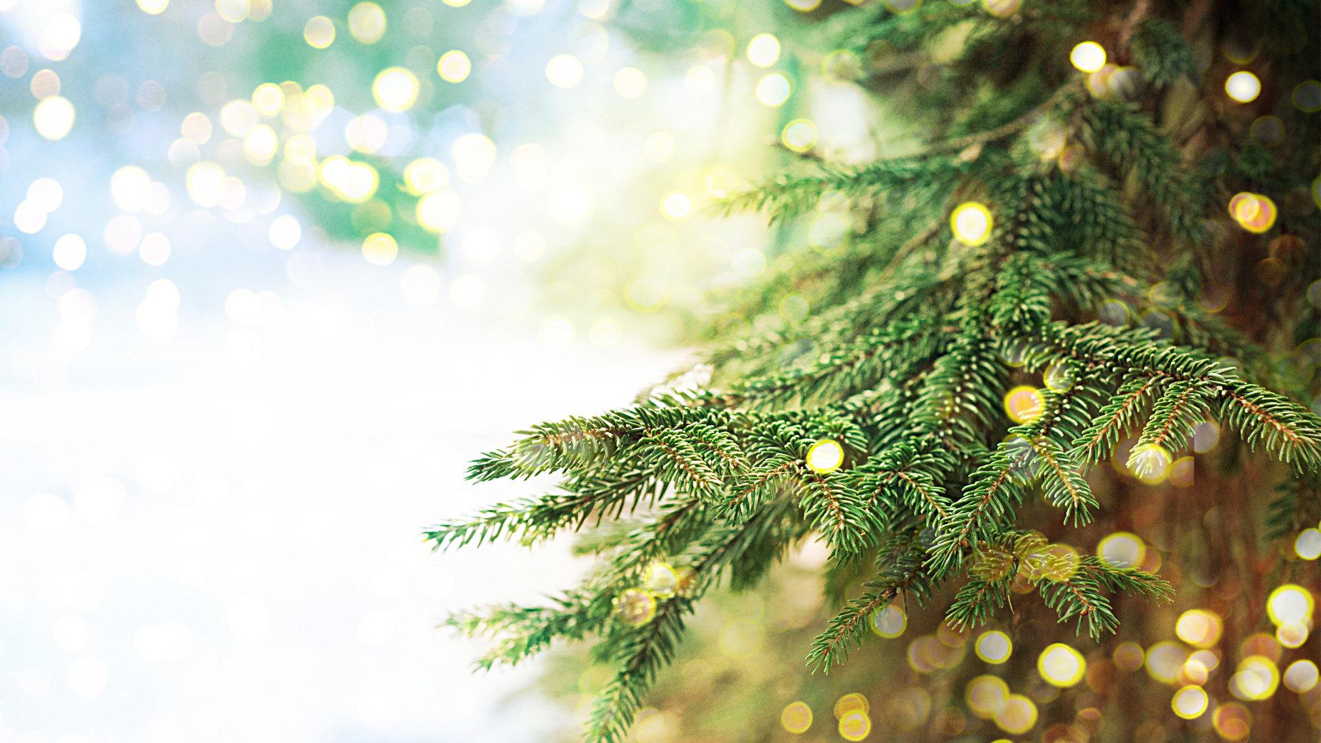how to decorate a christmas tree mygeektime - Christmas Tree Lights